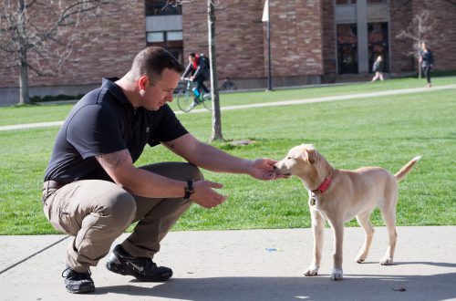 From Warrior to Undergraduate: Nathan Durazo Finds His Place at CU Boulder